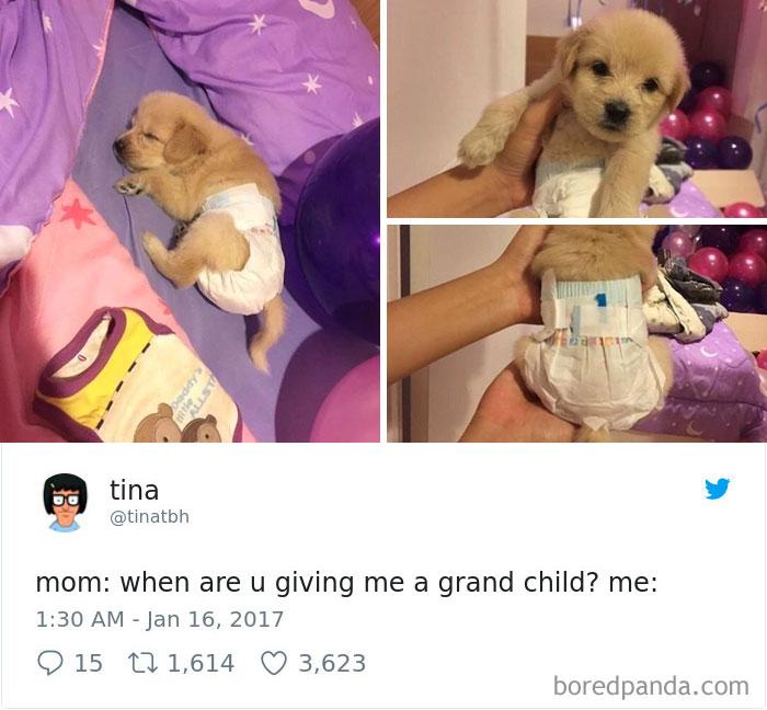 Mikor_lesz_már_unokám