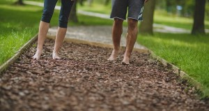 Bodzaliget Pihenőpark és Mezítlábas ösvény